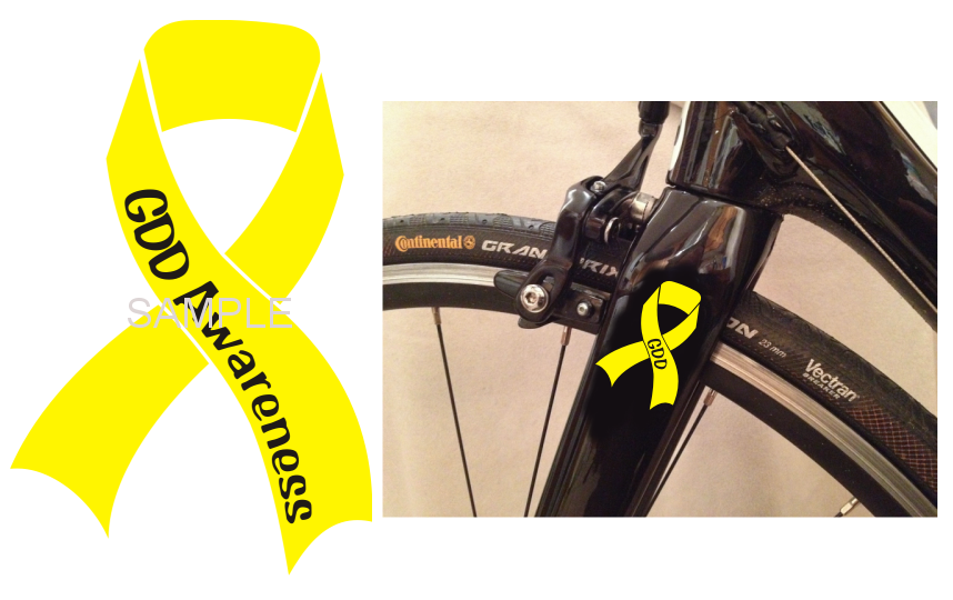 GDD Awareness Ribbon & Wheelchair Sticker Set